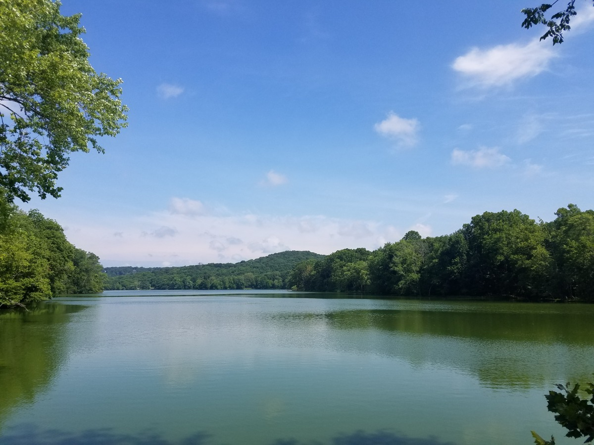 Trail Review: Radnor Lake trails (#5)
