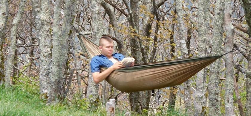 tree hammock read