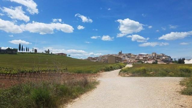 8 Reasons to hike El Camino thisspring